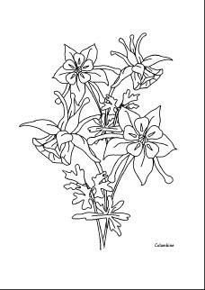 Λουλούδια-εικόνες για ζωγραφική