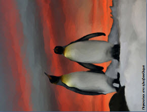 paintings-penguins9